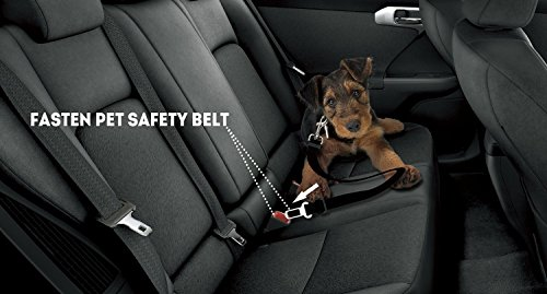 Etekcity-2-Pack-Pet-Dog-Car-Seat-Belt-Nylon-Material-16-26inch-AdjustableCertified-Refurbished
