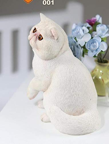 Sentinel Prime Costume (VIDANL Mnotht Real Animal Series No.8 1/6Th Scale Exotic Shorthair Cat ( ) Statue 4 Colors Collections for 12In Action Figures Must Haves for Kids Gift Basket The Favourite Anime)