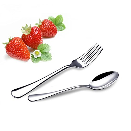VANRA 2-Piece Children Flatware Set 18/10 Stainless Steel Child Set Tableware Set Silver Cutlery Set Silverware Dinner Utensils for Kids (Chrome Finished) (1 Fork + 1 Spoon)