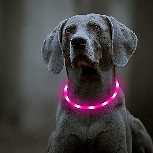 Domi USB Rechargeable LED Dog Collar - Glowing Pet Safety Collar Soft Silicone Light Up Dog Collars Dog Lights for Night Walking Keep Your Dogs Be Seen & Be Safe (Pink-Silicone)