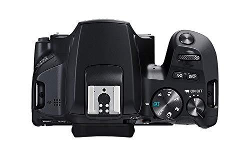 Canon EOS 250D – Cámara digital (24,1 MP, 6000 x 4000 Pixeles, CMOS, 4K Ultra HD, pantalla táctil) negro – kit con cuerpo y EF-S 18-55IS STM