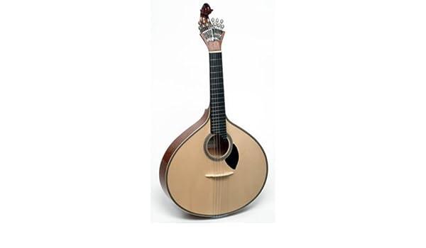 GUITARRA PORTUGUESA - APC (305 LS): Amazon.es: Instrumentos musicales