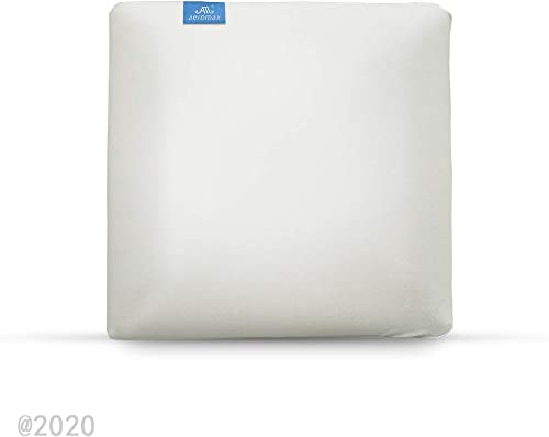 AM AEROMAX Memory Foam Throw Pillow Insert 20 x 20-Inch Insert with Cotton Cover Decorate Pillow Insert Without Deform After Longtime Use for Sofa Bedroom and Living Room