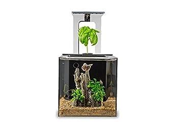 ecoqubec aquarium desktop betta fish tank for living office and home dcor office desk aquarium