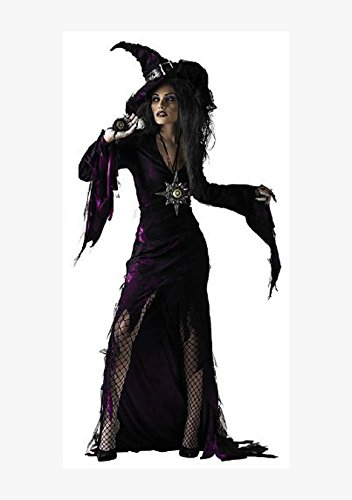 Disguise Adult Sorceress, Purple, Large (12-14) Costume