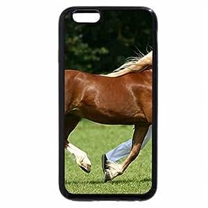 iPhone 6S Plus Case, iPhone 6 Plus Case, Horse :
