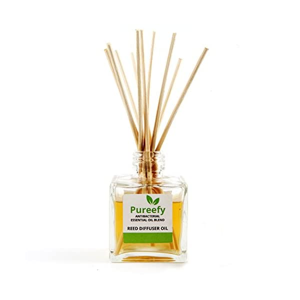 Breathe Fresh Anti-Bacterial Pureefy Essential Oil Blend (with Reeds) - 100% Pure, Natural and Undiluted. Natural Air Freshener Perfumes