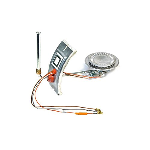 A.O. Smith 9006619005 Residential Complete Burner Door Assembly Kit (Natural) by A.O. Smith Corporation