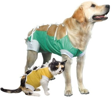 E-Collar Alternative for Cats and Dogs: After Surgey Wear. Recommended By Vets from VetMedWear