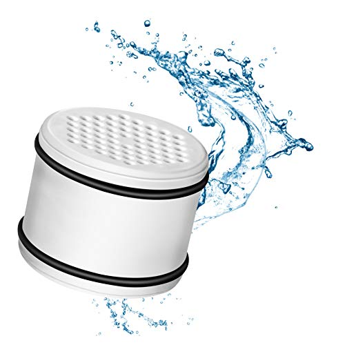 Ari 10 etapa con 2 cartucho de filtro de recambio de filtro de ducha Universal - elimina el cloro, impurezas y azufre olor mejorar piel y pelo salud - para ...