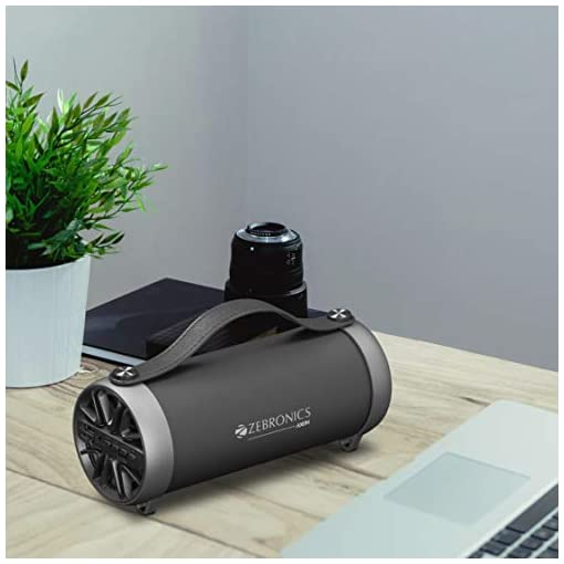 Zebronics Portable Bluetooth Speaker