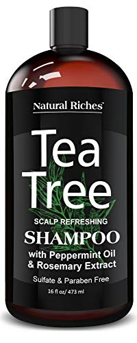 Natural Riches Tea Tree Shampoo - Helps Fight Dandruff with 100% Pure Tea Tree Oil shampoo for Dry Hair, Itchy Scalp, lice, Sulfate Free, Paraben Free. For Men and Women. 16 fl oz.