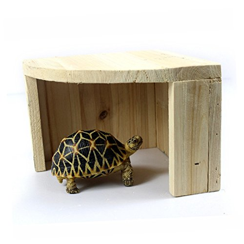 Reptile Hideout for Lizard Frog Turtle Scorpion Spider Snake Gecko Tortoise Bearded Dragon, 7.87.85.5 inches(LWH) by Mokook