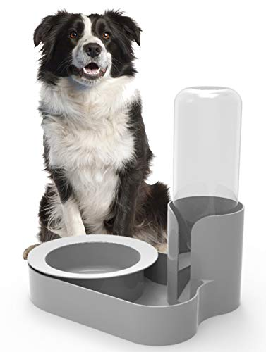Bugout Pet Feeder – The Original Ant Proof Food Bowl & Automatic Water Station for Cats & Dogs – Because Your Pet…