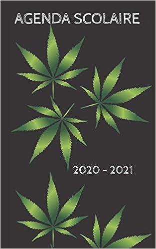 AGENDA SCOLAIRE 2020   2021: agenda journalier, 2 jours par page