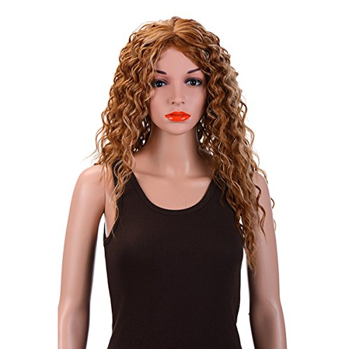 Merrylight Women Natural Curly Wavy Full Head Wigs Long Hair Cosplay Wigs FullCap Drawstring Hairpieces (Mixed Light (Good Group Fancy Dress)