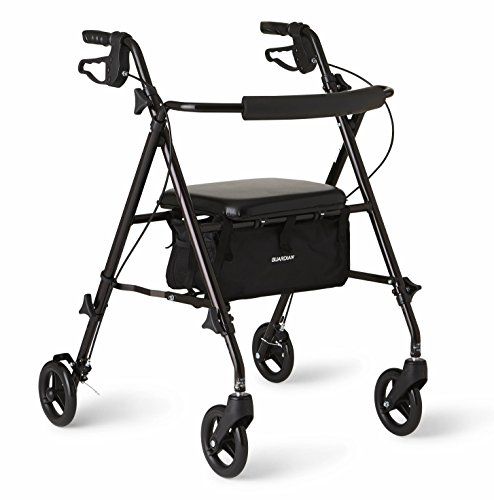 (Medline Freedom Lightweight Folding Aluminum Mobility Rollator Walker with 6-inch Wheels, Adjustable Seat and Arms, Black)
