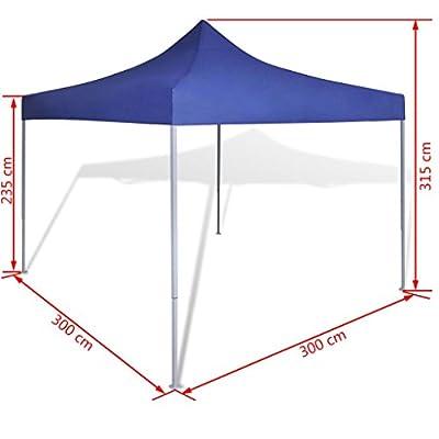 Nishore Blue Foldable Tent 10' x 10' : Garden & Outdoor