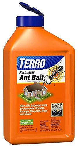 terro-ant-bait-plus-pack-of-2