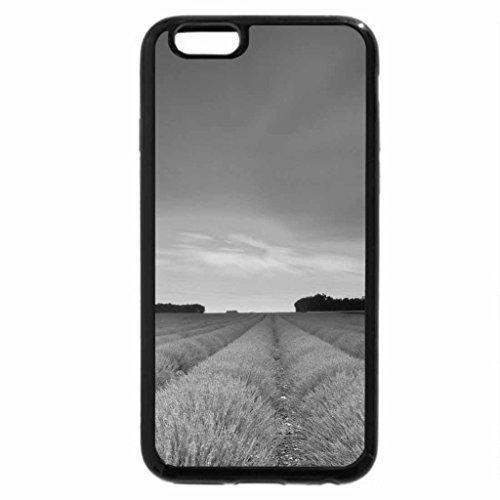 iPhone 6S Plus Case, iPhone 6 Plus Case (Black & White) - sunset over lavander field
