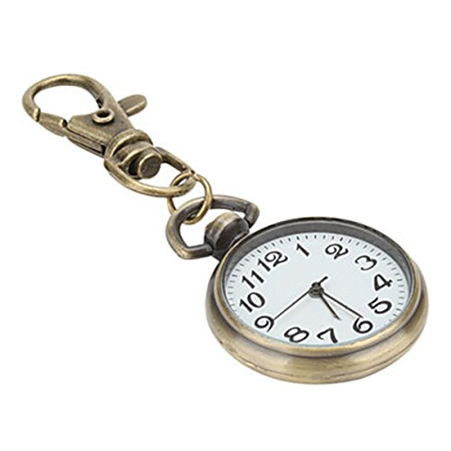 Zhisan Big Dial Nurse Watch Keychain Medical Pocket Watch Doctor Watch (Colourful Dial)