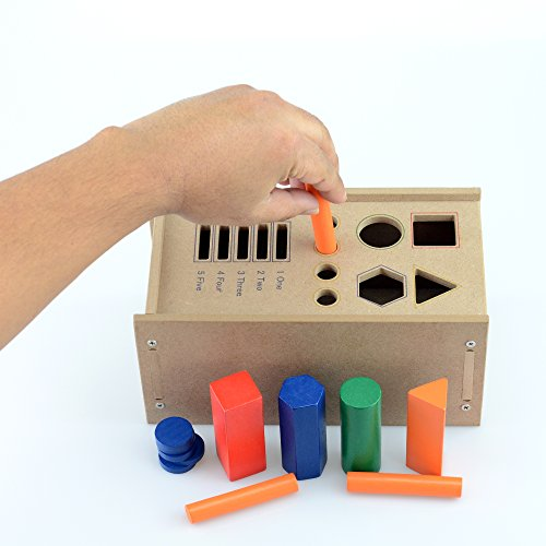 Adapt Ease Fine Motor Sorting Drop Box Therapy Toy by Adapt-Ease