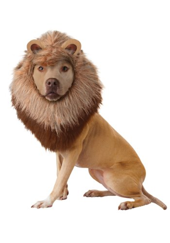 California Costume Collections Animal Planet Lion Dog Costume, -