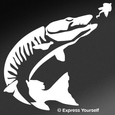 Express Yourself Products Tiger Muskie (White - Image Facing as Shown - Medium) Decal Sticker - Freshwater Fish Collection