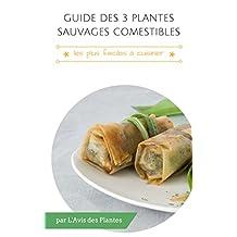 Guide des 3 plantes sauvages comestibles les plus faciles à cuisiner (French Edition)