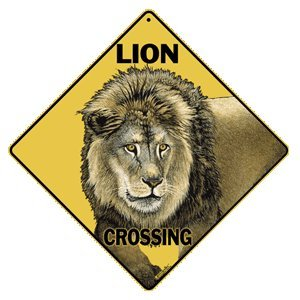 The Lion In Your Living Room Mp