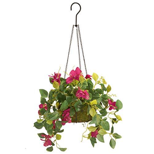 National Tree Bougainvillea Plant Hanging Basket, 9 Inch, Multi