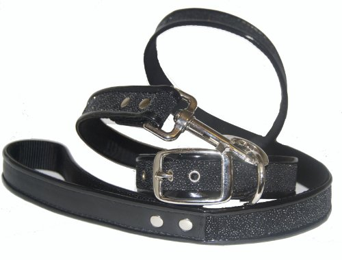 Jodi Head's RJ Cash Petwear Glam Sparkle Dog Collar and Leash, Large, Black (Glam Collar)