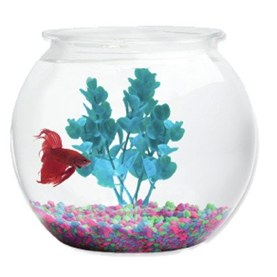 Aqua Accents Aquarium Bowl [Set of 5] Size: 7'' H x 8'' W x 8'' D by HawkEye (Image #1)