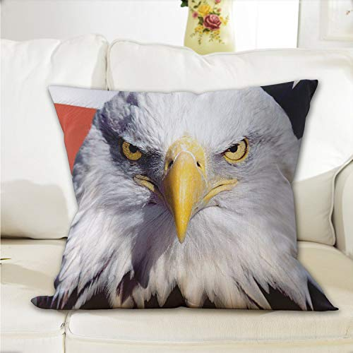 NiYoung Zipper Throw Pillowcase Bald Eagle and American Flag Polyester Home Decorative Throw Pillow Case Cushion Cover for Bed Sofa Office Chair Car Seat Kids Room