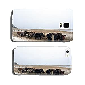 Horse Group in Iceland cell phone cover case iPhone6 Plus
