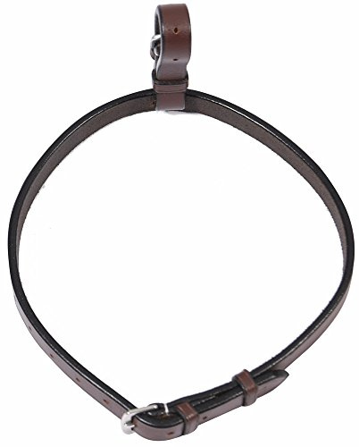 Flash Noseband Bridle - 6
