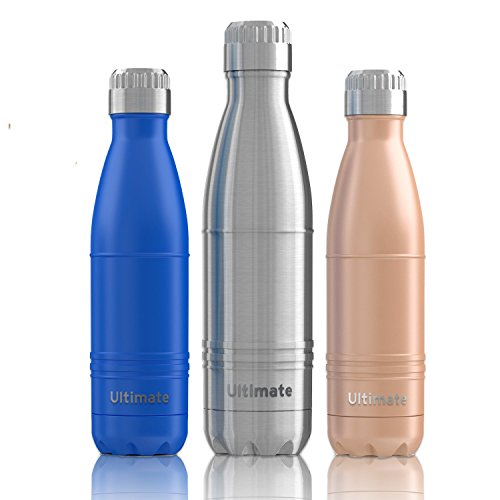 Ezisoul Insulated Stainless Steel Sports Water Bottle - No Leaks, Sweating or Toxins - Brushed Stainless Steel - 17oz