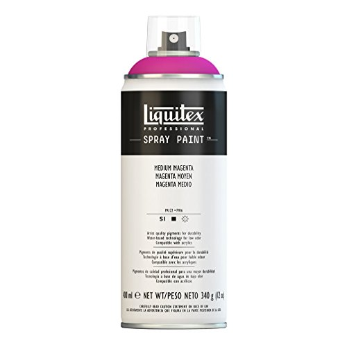 Liquitex 4450500 Professional Spray Paint 12-oz, Medium Magenta