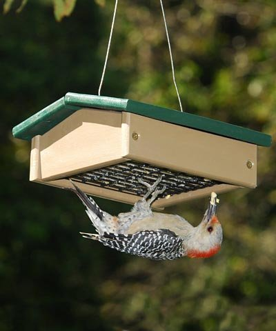 Songbird Essentials Upside Down Suet Feeder-Driftwood