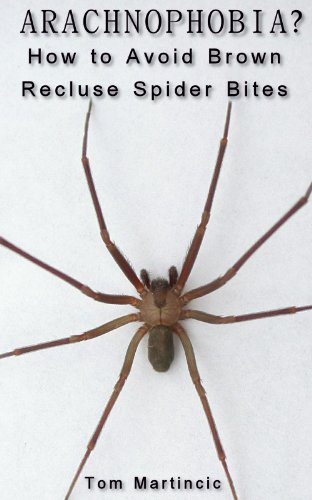 arachnophobia how to avoid brown recluse spider bites tom