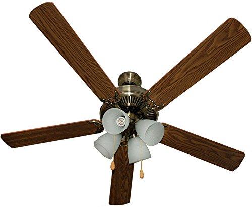l ceiling fan - 9