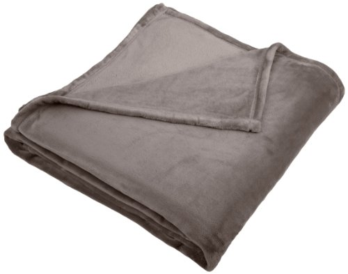 Pinzon Velvet Plush Full/Queen Blanket, Gray