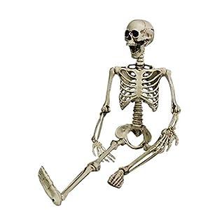 Fan-Ling Jointed Human Skeleton Decoration ,Halloween Party Prop Decoration,Halloween Skeleton,Halloween Props, Outdoor Decoration Party, Best Halloween Decoration (90cmX20cm)