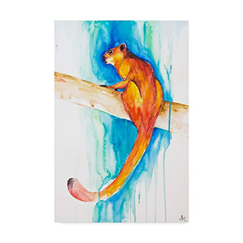 Flying Red Squirrel (Trademark Fine Art Giant Red Flying Squirrel by Marc Allante, 22x32-Inch)