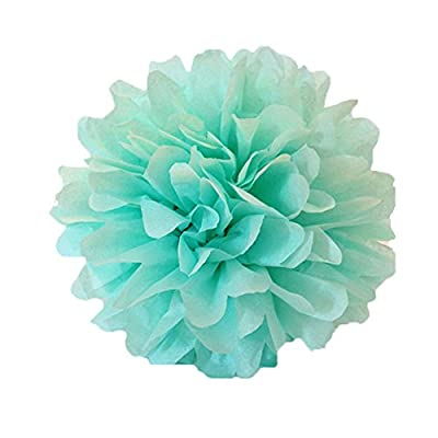 CheckMineOut 6Pcs 10inch Mint Green Tissue Paper Pom Poms Decorative Flowers Wedding Centerpieces Bridal Baby Shower Party Decoration