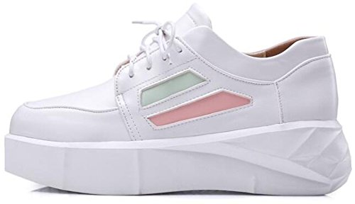 Summerwhisper Vrouwen Trendy Ronde Neus Lage Top Lace-up Mid Hak Platform Skate Sneakers Wit