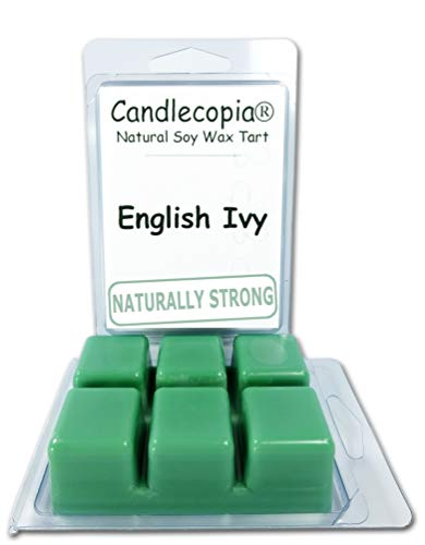 Candlecopia Strongly Scented Hand Poured Vegan Wax Melts, 12 Scented Wax Cubes, 6.4 Ounces in 2 x 6-Packs (English Ivy) ()