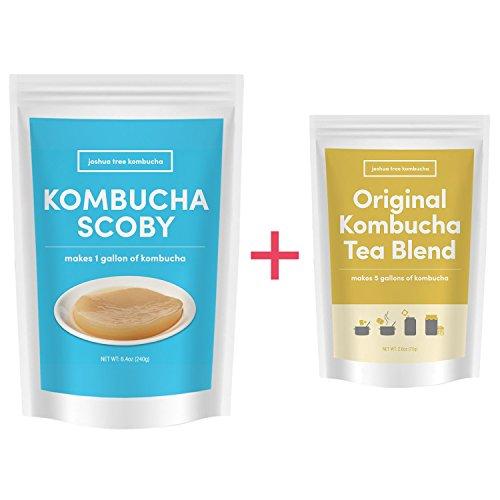 Kombucha Scoby & Organic Kombucha Tea Blend By Joshua Tree Kombucha | Kombucha Starter Kit