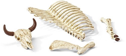 Schleich Bones Accessory Play Set