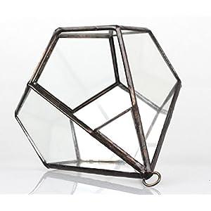 NCYP 5.3 inches Hanging Glass Terrarium Modern Artistic Wall Tears Shape Diamond Geometric Polyhedron Air Plant Holder Desk Planter DIY Centerpiece Vase Succulent Flower Pot (Plants not Included) 5